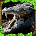 鳄鱼模拟器中文版