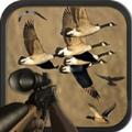 猎禽季节游戏