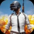 战场求生iOS版