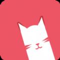 红色的猫咪
