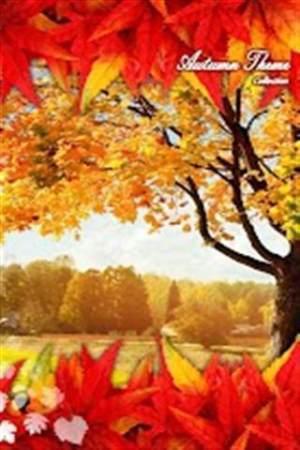 秋天的梦想主题壁纸APP图4