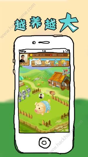全民养猪app图2