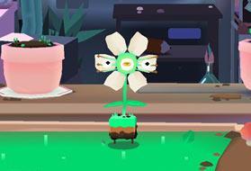 植物搞怪器