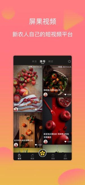 屏果视频app图1