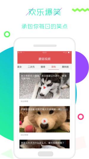 草菇视频app图1