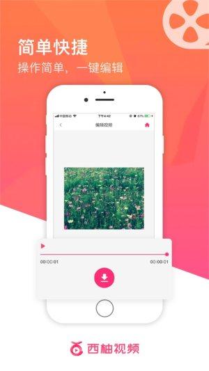 西柚视频app图2
