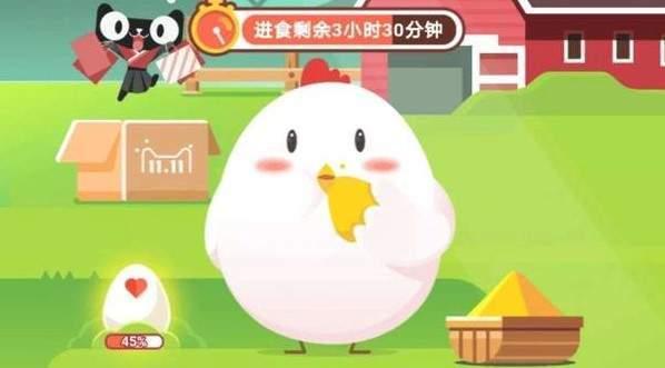 支付宝小鸡雇佣是什么怎么弄 支付宝小鸡雇佣攻略[多图]