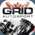 GRID2020安卓版中文手游下载 v1.0